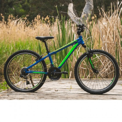 """Reid Scout 24"""" tyre Kids Bike, Blue Green Rider 128-146 cm"""